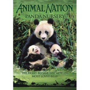 panda movie