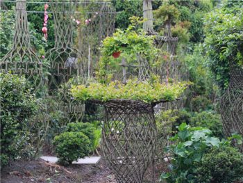 bonsai-garden07