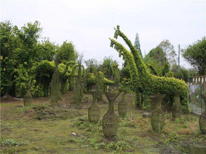 bonsai-garden08