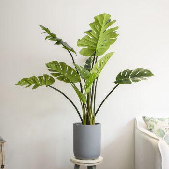 1.2m monstera deliciosa artificial plant